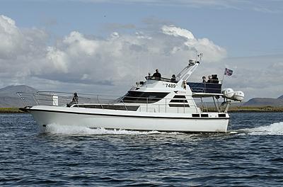 Walbeobachtungsboot Elding2