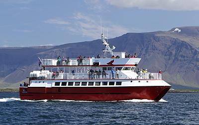 Walbeobachtungsboot Hafsúlan